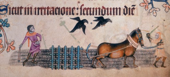 Stampa medioevale con l'antica tecnica di aratura dei campi.