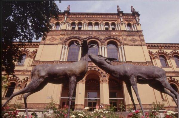 Ingresso al Museo civico di storia naturale