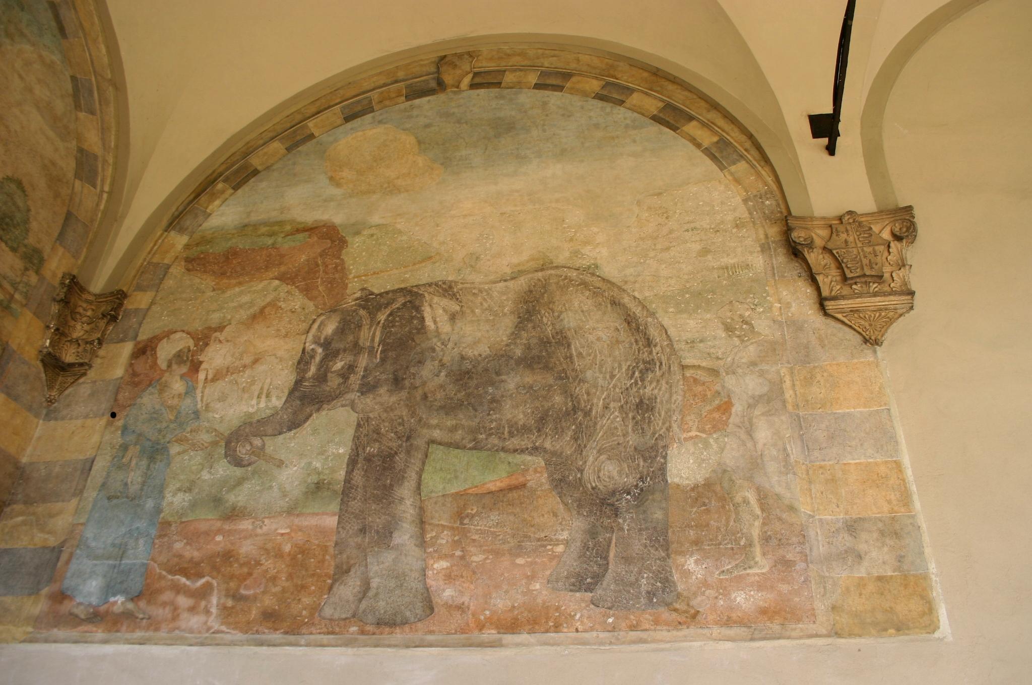 Particolare del portico dell'Elefante con l'esotico animale in primo piano (foto Giovanni Dall'Orto)