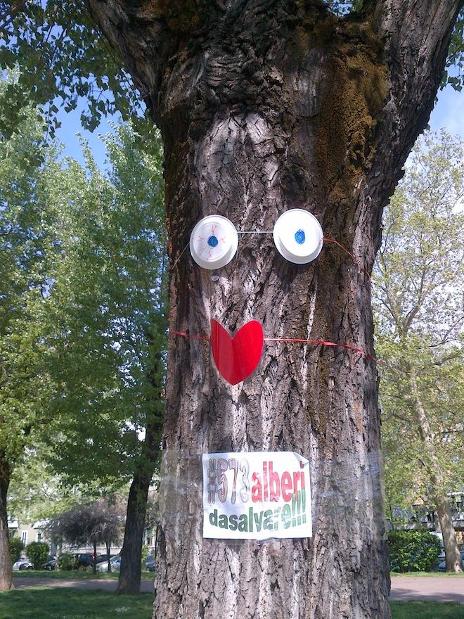 Uno degli alberi da abbattere (o già abbattutto). Foto da giornimoderni.donnamoderna.it