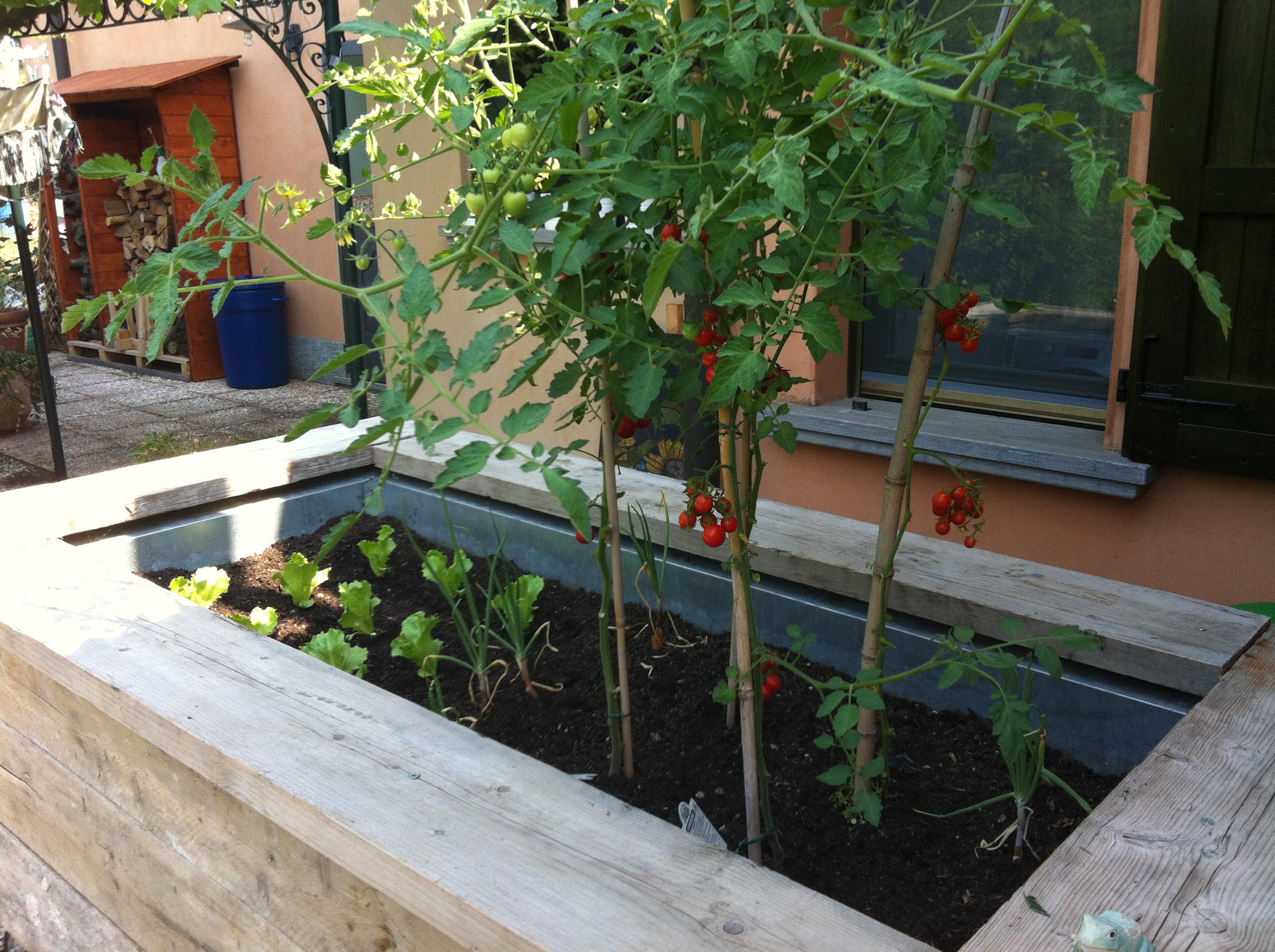 Una vasca da orto fai da te per un terrazzo (foto Ciabattine.net)