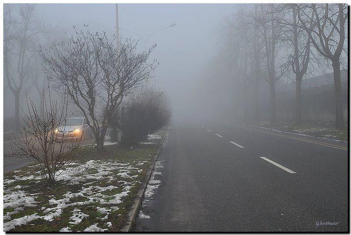 Una nebbia dove nascondersi, come canta Roberto Vecchioni... (photo Luigi Alloni)