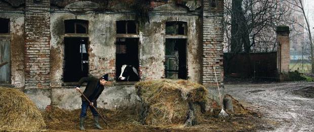 Le stalle della cascina Campazzo (foto agricity.it)