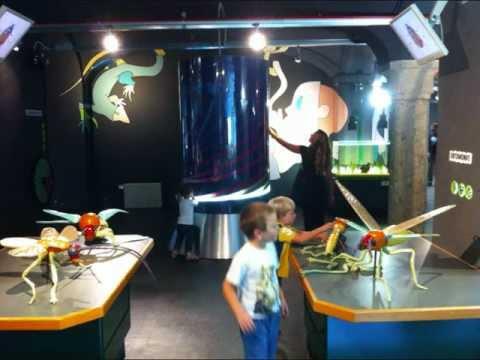 Feste al BioLab del Museo di Storia e Scienze Naturali (photo: www.assodidatticamuseale.it)