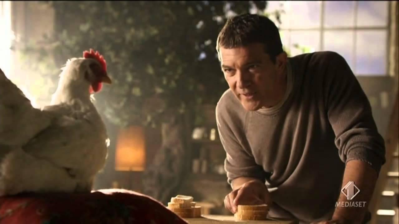Addio al povero Banderas e alle merendine fuori moda, a consolarlo solo 4 galline spennacchiate