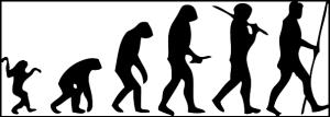 606px-human_evolution_scheme-svg