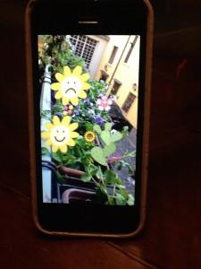 Oggi ho fatto giardinaggio e poi ho personalizzato con Snapchat in modo kitsch la foto di alcune piante....