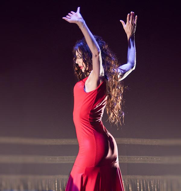 carmen_flamenco_sola
