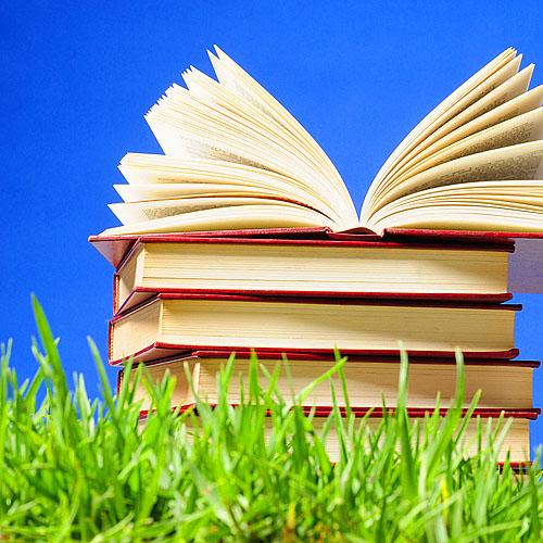 book-big