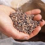 scagliette-cacao-800x533