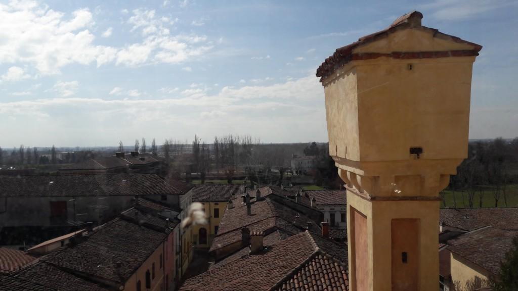La campagna circostante. oltre le mura di Sabbioneta (foto di Robert Ribaudo)