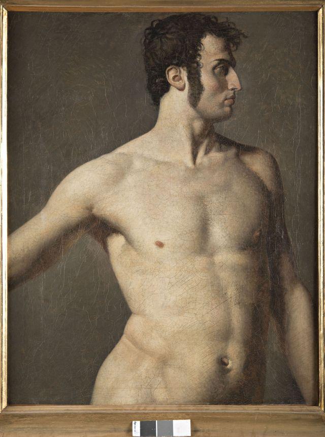 Immagine del dipinto olio su tela di Ingres: Torso d'uomo, 1799